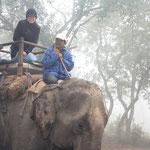 Unser erster Elefantenritt im Dschungel.