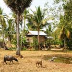 Die Dörfer um Siem Reap