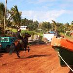 Die Einwohner Rapa Nui's sind noch mit Pferden unterwegs.