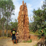 Riesen Termitenhügel