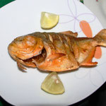 Pampas del Yacuma - Piranha fritiert