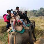 Da drückt sich eine indische Familie (7 Personen) auf einen Elefanten. Sah nicht mehr so gemütlich aus! :)