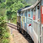 Unterwegs durch den Dschungel von Goa Richtung Mumbai