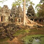 Drei wunderbare Tage in Angkor, die beste Tempelanlage die wir je gesehen haben. Nicht so langweilig wie Griechenland!!! :)