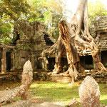 Angkor, Das grösste religiöse Bauwerk der Welt. Hunderte von Tempeln, die bis heute erhalten blieben bilden das Skelett eines gewaltigen Zentrums eines Reiches, das sich von Myanmar bis Vietnam erstreckte. Foto: Preah Khan