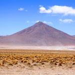Unterwegs auf dem Altiplano