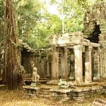 Angkor, die Hauptstadt des alten Khmer-Reiches. Gebaut wurden die Tempel zwischen dem 9. und 13. Jahrhundert. Als in der kleinen Stadt London erst 50'000 Menschen lebten, zählte Angkor bereits 1 Mio. Einwohner. Foto: Preah Khan