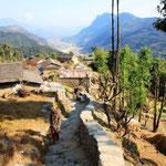Zurück in Phedi und schnell zurück zu Franziska nach Pokhara.