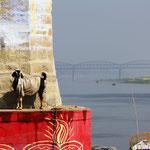 Geis und Ganges