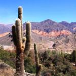 Unterwegs durch die Quebrada de Humahuaca. Die Quebrada de Humahuaca ist eine Schlucht, die nahe von San Salvador de Jujuy (1259 m), beginnt und über etwa 150 Kilometer bis zur Stadt Humahuaca 2950m ansteigt.