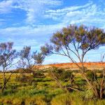 Unterwegs ins Zentrum von Australien