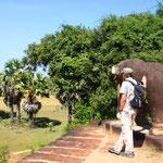 """Das Khmer-Wort Angkor heißt wörtlich Stadt. Heute steht die Bezeichnung """"Angkor"""" vor allem für das historische Hauptstadtgebiet am Fuß des Phnom Bakheng, die Stadt Yasodharapura und ihre Nachfolgerin Angkor Thom mit Umgebung"""