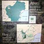 Immer wieder erschreckend diese Bilder der Zerstörung des südamerikansichen Regenwaldes. Was Zuhause vielleicht nicht mehr das Top Thema ist, wird hier deutlich gemacht. Der Wald ist in diesem Gebiet vollständig verschwunden!!