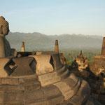 ... mit über 400 Buddha-Statuen