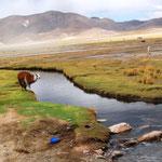 Weg von Potosi nach Uyuni