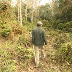 Eine aufregende Wanderung durch den Dschungel, wahrlich nicht ungefährlich!!!
