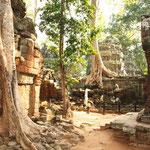Bild aus der Tempelanlage von Ta Prohm