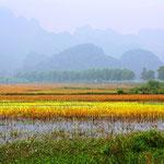 Bei Minh Binh