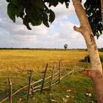 Unterwegs nach Siem Reap