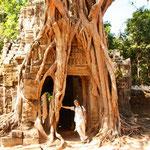 Das Osttor ist komplett von einem alten Baum überwachsen. Die Wurzeln des Baumes zerstören das Tor mehr und mehr. Die Natur holt sich seinen Platz wieder zurück.