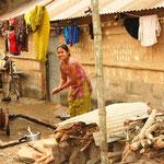 Ursprünglich lebten lediglich indigene Tharus in Chitwan. Seit den 1950er Jahren zogen zahlreiche Siedler aus den Hügeln auf der Suche nach landwirtschaftlich nutzbarem Land in die Tiefebene des Terai's.