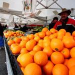 Marktin Galicien