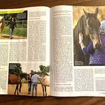 CAF Bericht über Coaching mit Pferden