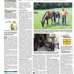 2016: Bayerwald Echo