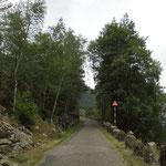 Das ist eine Einbahnstrasse, also kein Gegenverkehr :-)) und man darf 80km/h fahren...