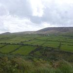 typische irische Landschaft, die Wiesen und Felder sind von Steinmauern umringt um den Bodenabtrag durch den ständigen Wind zu verhindern