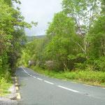 Wir fahren über den Ring of Kerry zur Beara Halbinsel