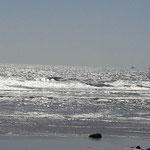 ......bei bestem Wetter. Im Hintergrund sieht man die Skellig Michael, dort kann man mit einem Boot rüberfahren und die verlassene mittelalterliche Mönchssiedlung besichtigen