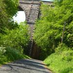 ...dann fahren wir auf einmal durch dieses Viadukt. Es ist so zugewachsen, dass wir es  fast übersehen haben, die zugehörige Eisenbahnlinie ist längst abgebrochen...