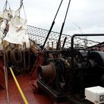 Im Kieler Hafen hats nen Haufen historische Segelboote