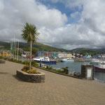 Und sehen Palmen im Hafen :-)