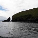 Dann entschliessen wir uns zu einer Bootsfahrt in der Dingle Bay