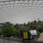 wir besuchen den botanischen Garten in Carmarthen, sensationell!