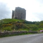Das hier ist Minard Castle. Solche Ruinen gehören zu Irland, wie die überall grasenden Schafe