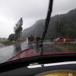 Es regnet und stürmt enorm.....unter 10 Grad......Das Vieh wird über die Landstrasse zur nächsten Weide getrieben...völlig normal .....