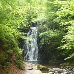 Etwas versteckt dieser Wasserfall.....