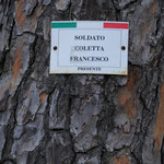 Rignano Flaminio