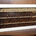 Rohkaffee, Röstkaffee, Industriekaffee (unten)