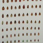 プレゼント 茶色 Present brown/2008