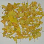 プレゼント 黄色 Present yellow/2008