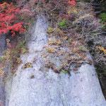 岩のお化粧  撮影者 小西弘純