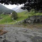 Blick vom Gletscherschliff, auf dem das Biinelti steht, hinauf zum Weiler Mutt.