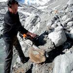 Im westlichen Nachbartal von Zermatt: Dendrochronologe Martin Schmidhalter untersucht oberhalb Ferpècle (Val d'Hérens) im Vorfeld des Glacier du Mont Miné Baumstämme, die ein Alter von bis zu 8'000 Jahren aufweisen.