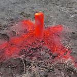 Die Pflöcke für die Grobabsteckung wurden schick rot angeschmiert