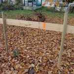Herbstliche Schnurgerüststimmung