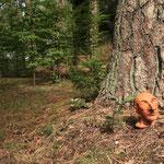 Kunst im Wald :-)